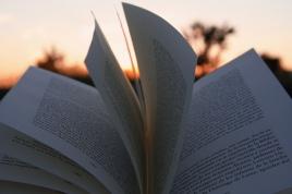 Libro al Atardecer