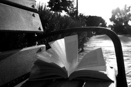 Libro sobre el banco bn